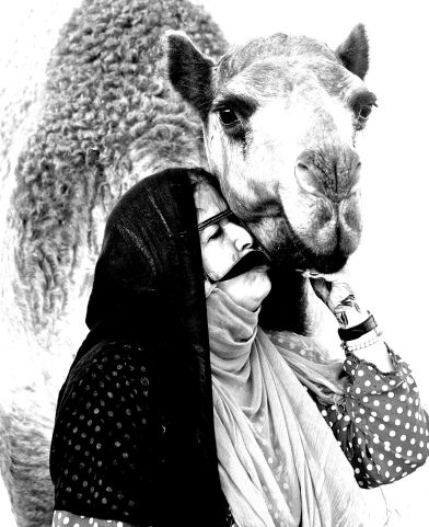 Fatima Kisses the Camel